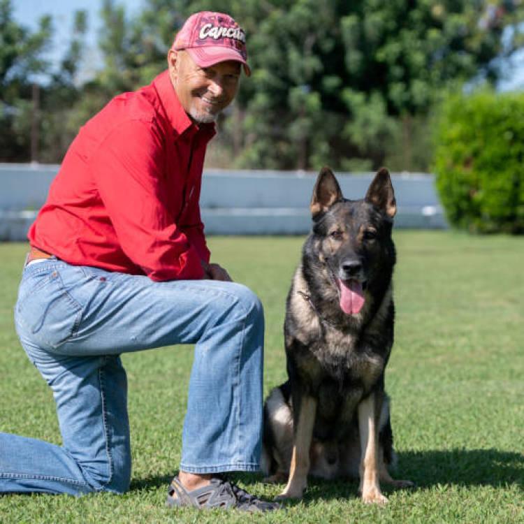 Una vida de perros (Reportaje)